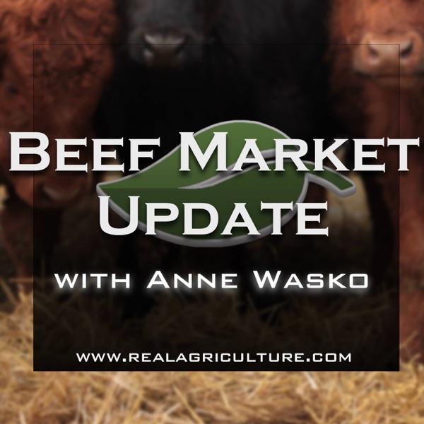 Beef Market Update