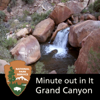 Grand Canyon National Park: Minute Out In It podcast
