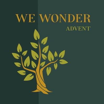 We Wonder: Advent:We Wonder