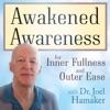 Awakened Awareness artwork