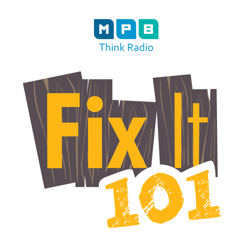 Cover image of Fix It 101