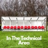 In The Technical Area artwork
