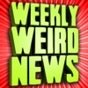 Weekly Weird News artwork
