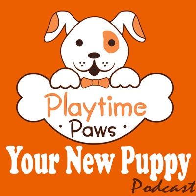 Your New Puppy: Dog Training and Dog Behavior Lessons to Help You Turn Your New Puppy into a Well-Behaved Dog:Debbie Cilento: Dog Trainer | Dog Behavior Consultant | Owner of Playtime Paws | Belly Rub Specialist
