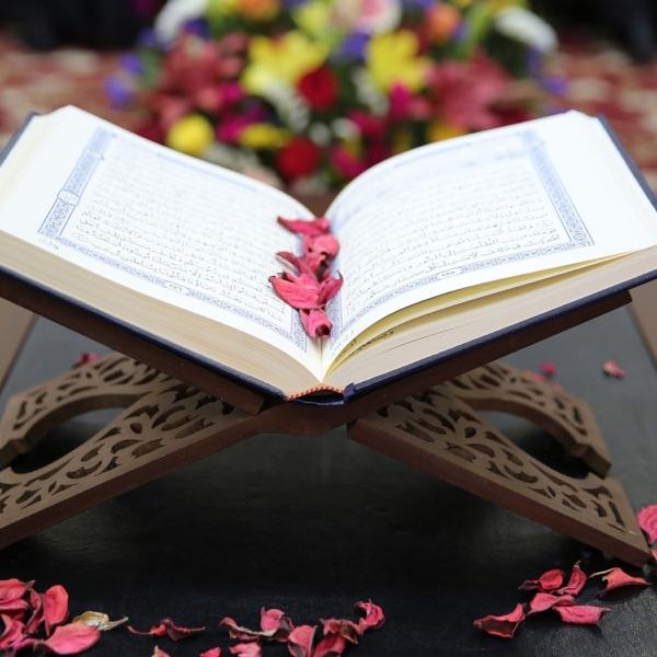 Muhamed Porča - opšta predavanja