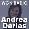 Andrea's Chicago
