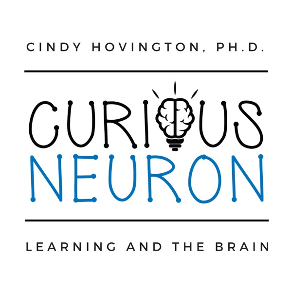 Curious Neuron: Learning and the Brain