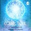 Cosmic Soul  artwork