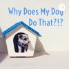 Why Does My Dog Do That?!? artwork
