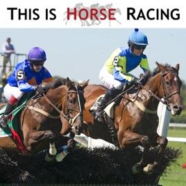 Christmas Horse Racing.This Is Horse Racing Guy Torsilieri Talks Jump Racing
