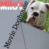 Milo's Movie Doghouse artwork