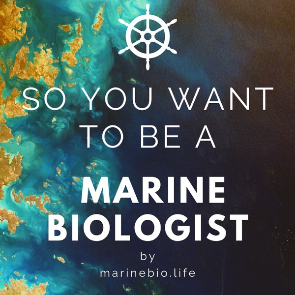 So You Want to Be a Marine Biologist image