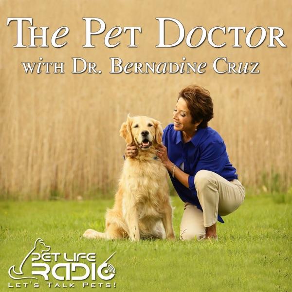 The Pet Doctor - Keeping your pets healthy & pet wellness - Pets & Animals on Pet Life Radio (PetLifeRadio.com)
