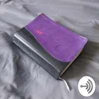 Read Your Bible Throught the Year podcast