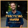 Practicing Human artwork