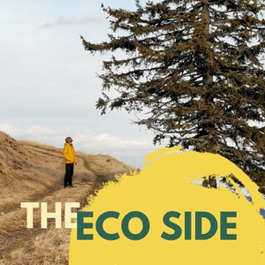 The Eco Side