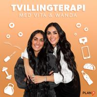 Tvillingterapi