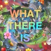 What There Is artwork