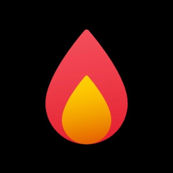 The Burn screenshot