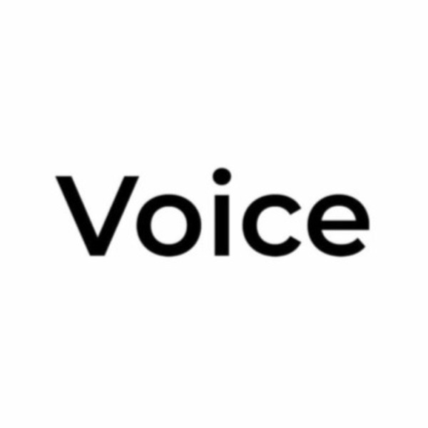 Voice Media LV image