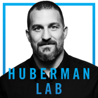 Huberman Lab
