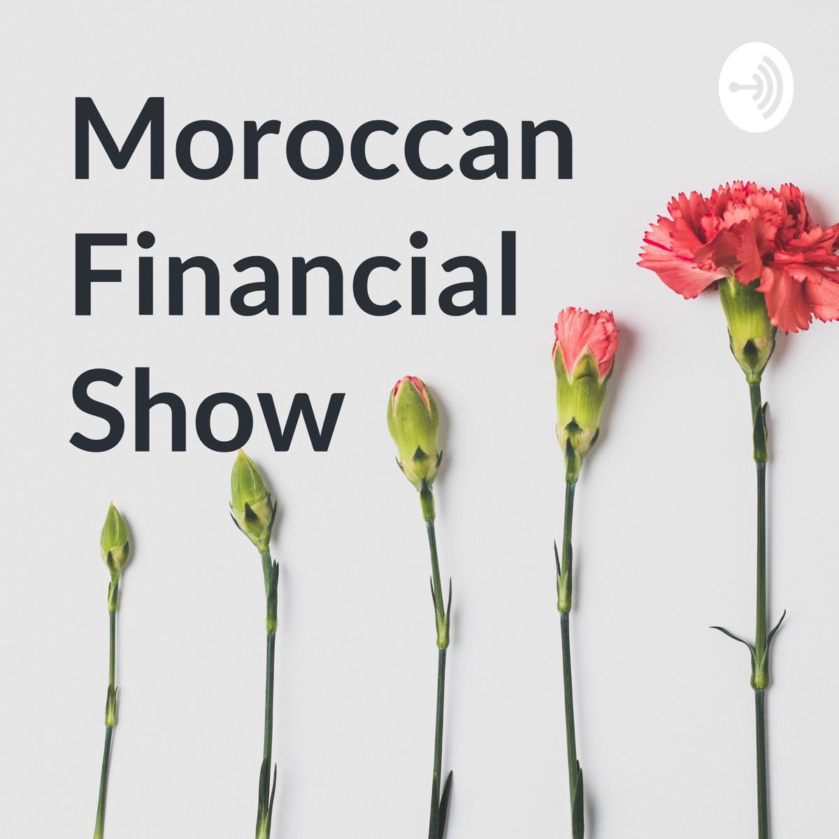 Moroccan Financial Show