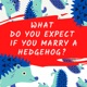 What Do You Expect If You Marry A Hedgehog?