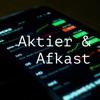 Aktier & Afkast