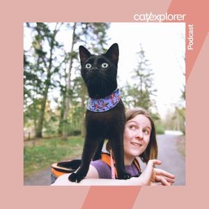 Catexplorer Podcast