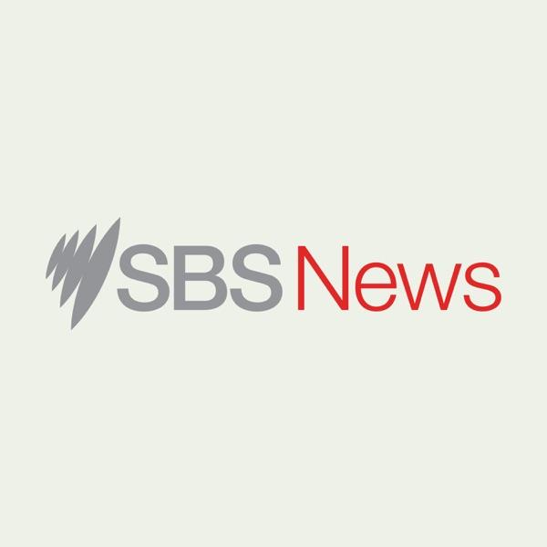SBS News In Depth