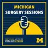 Michigan Surgery Sessions artwork