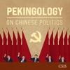 Pekingology artwork