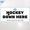 Hockey Down Here artwork