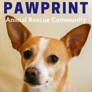 Pawprint   animal rescue podcast for dog, cat, and other animal lovers