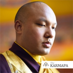 Selected Talks on Buddhism and Meditation by the Karmapa
