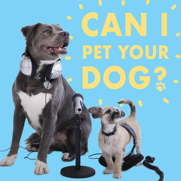 Can I Pet Your Dog? Artwork