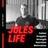Jules's Life artwork
