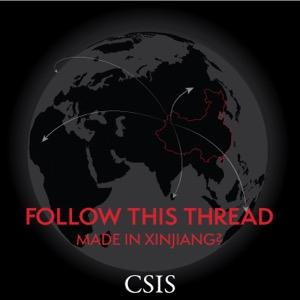 Follow This Thread: Made in Xinjiang?