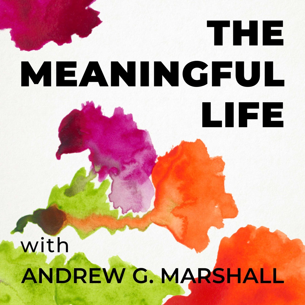 The Meaningful Life with Andrew G. Marshall