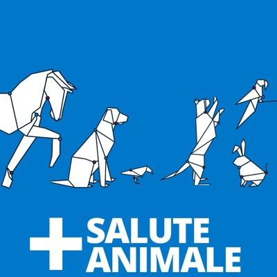 Salute Animale