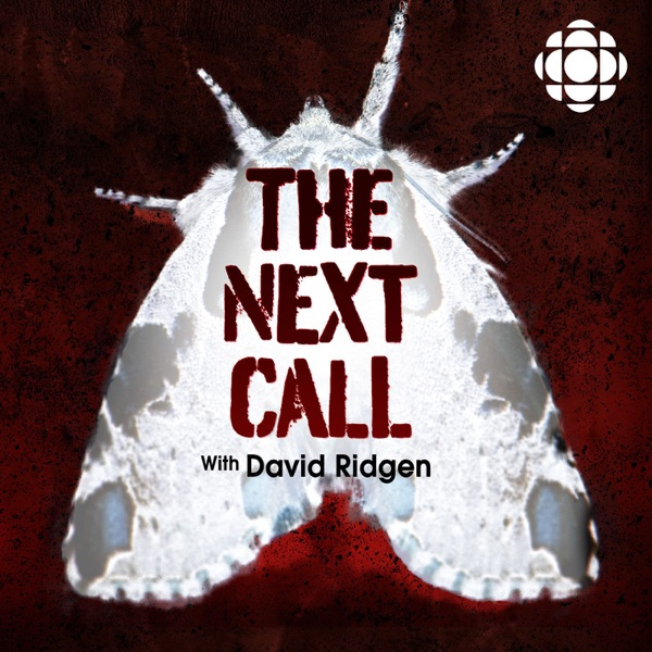 The Next Call with David Ridgen
