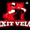 Exit Velo artwork