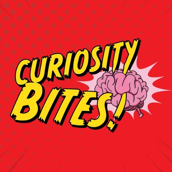 Curiosity Bites Artwork