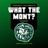 What the Mont? artwork