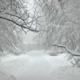 Snö, konsumtion och vackra vyer