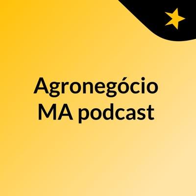 Agronegócio MA podcast