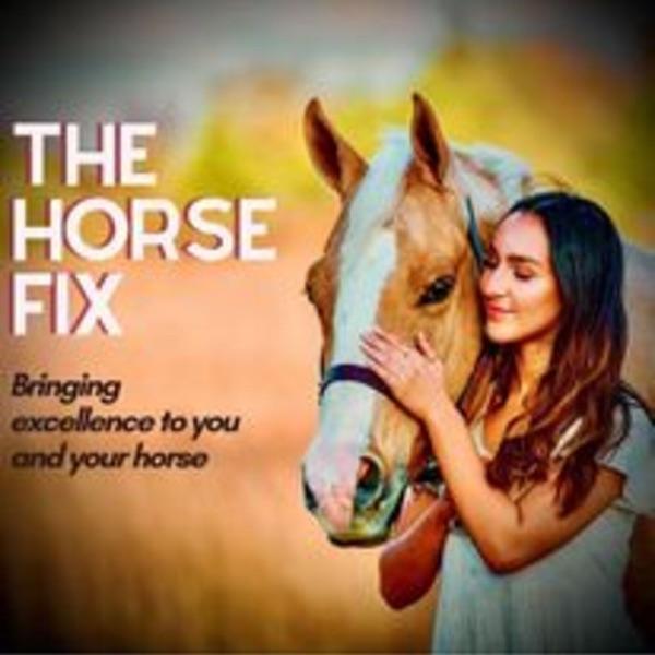 The Horse Fix Artwork