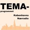 Temaprogram