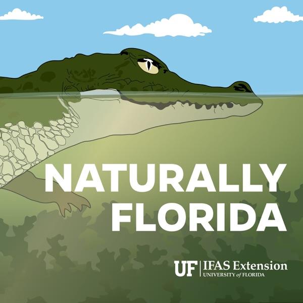 Naturally Florida Artwork