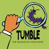 Announcing The Wildlife Of Your Home Podcourse!
